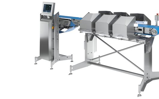 Scanvaegt's SP520 Compact Sizer + is the ideal solution for weight-sizing jobs