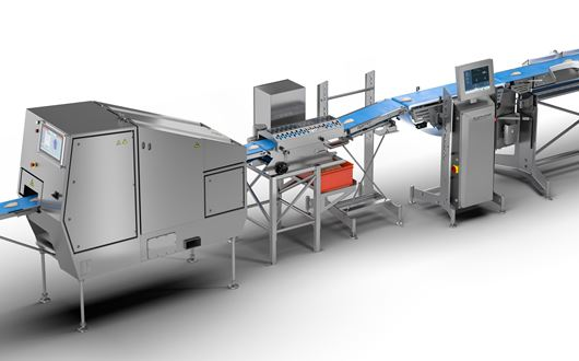 Chicken fillet portion cutting and sizing solution is designed for use in the poultry industry.