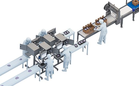 Scanvaegt's Multiple Packing Line is an extremely flexible packing system, which allows packing several different products in just one packing line.